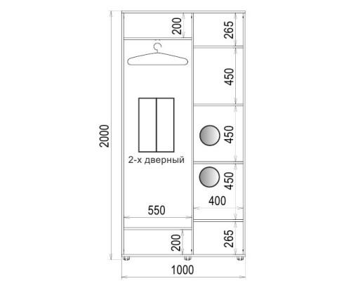 Шафа-купе 2 двері Дзеркало/Дзеркало Класік-1 100*200*45 колір Венге магія